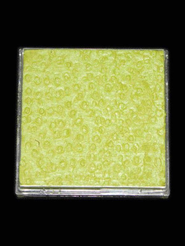 Lente 40 gram